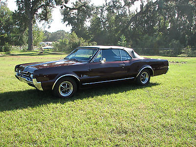1967 Oldsmobile Cutlass  1967 oldsmobile CUTLASS CONVERTIBLE