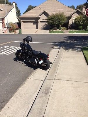 2016 Harley-Davidson Sportster Harley Davidson/Sportster/Forty Eight 2016