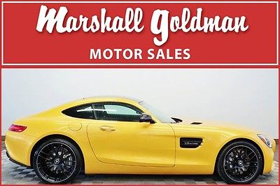 2017 Mercedes-Benz Other 2017 Mercedes AMG GT Solarbeam Yellow w/Blk exclusive lthr & Dinamica 508 miles