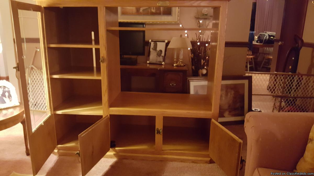 Entertainment Center Cabinet