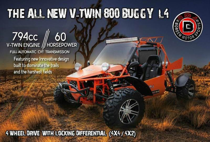 2016 BMS V Twin 800 Buggy