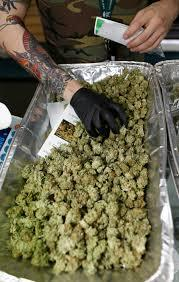 KUSH **REAL GUY***LOCAL DELIVERYS*** marijuana Kush budS