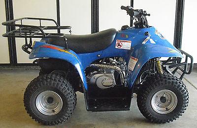 Lifan 2004 lifan 50 cc 2 x 4 atv motorcycle