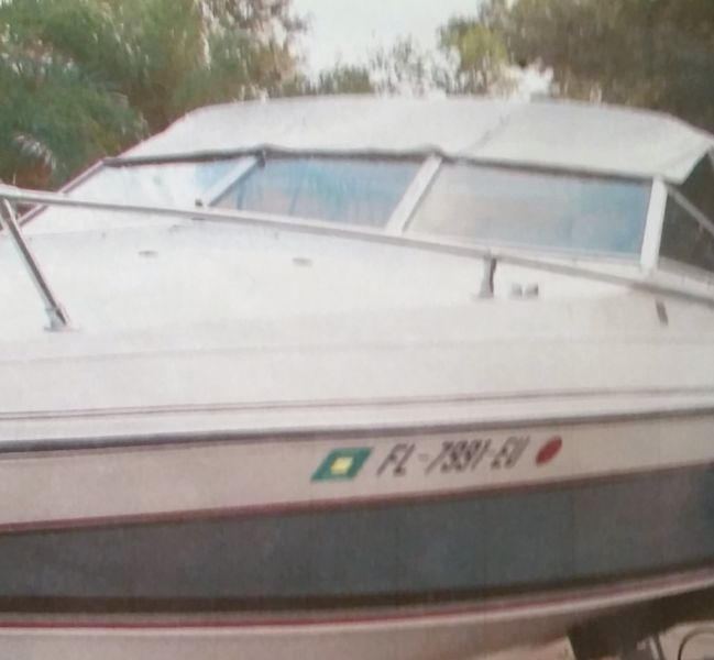 1987 Classic 192 Wellcraft Cuddy with a 207 HP Chevy motor