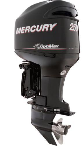 2014 Mercury Marine 200 HP Engine and Engine Accessories