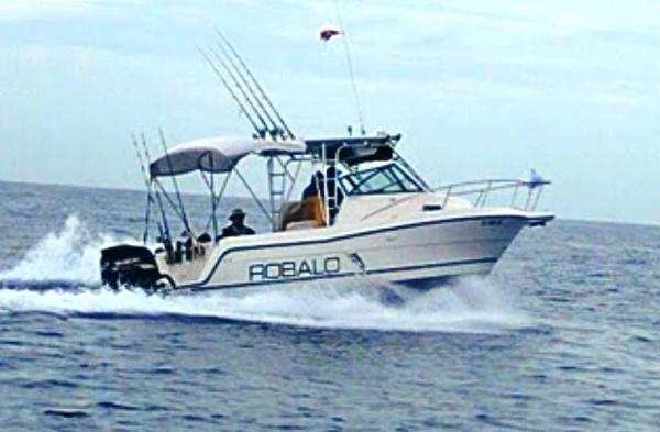 1994 Robalo 2440 Walkaround
