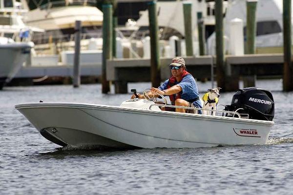 2017 Boston Whaler 110 Sport