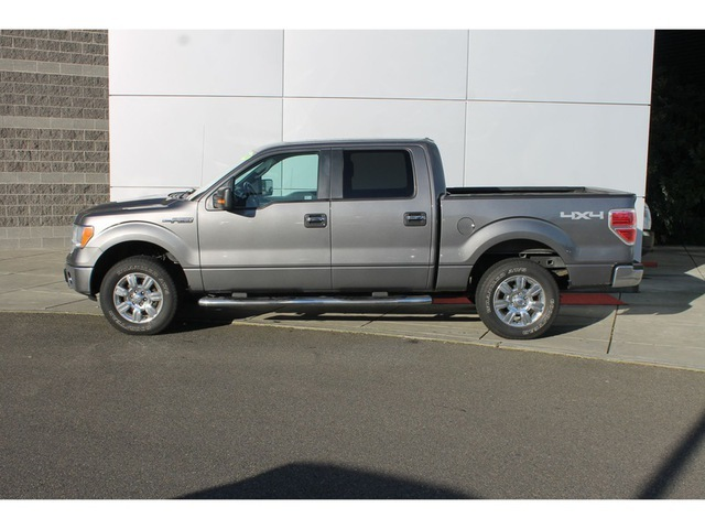 2010 Ford F-150, 1