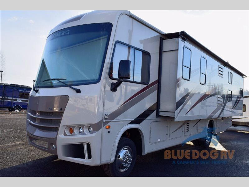 2016 Forest River Rv Georgetown 3 Series 31B3