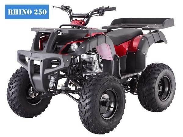 2016 Taotao RHINO 250
