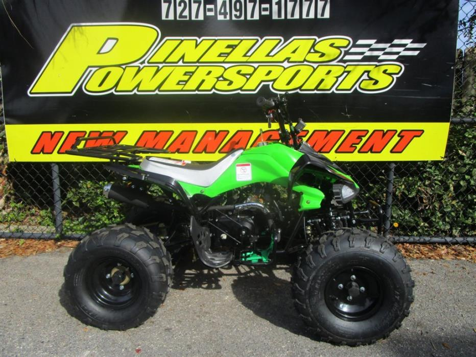2016 Taotao Cheetah 110cc ATV