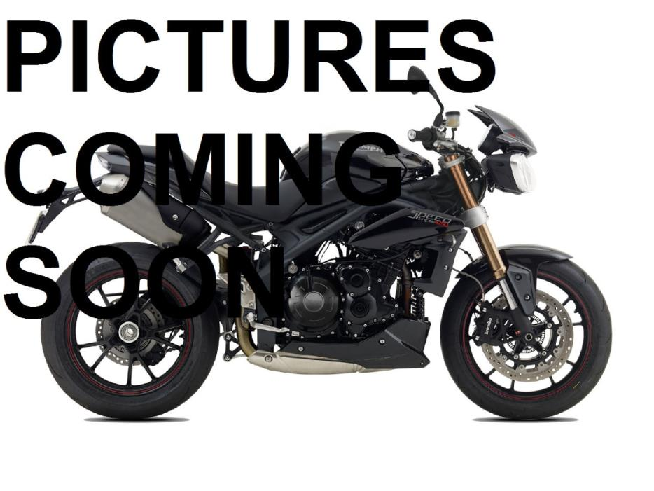 2013 Triumph SPEED TRIPLE ABS