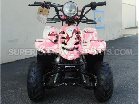 2013 Tao Tao 110cc ATV Type B1