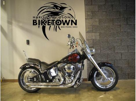 2004 Thunder Mountain Custom Baditude
