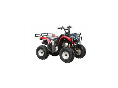 2013 Tao Tao 110cc ATV Type D