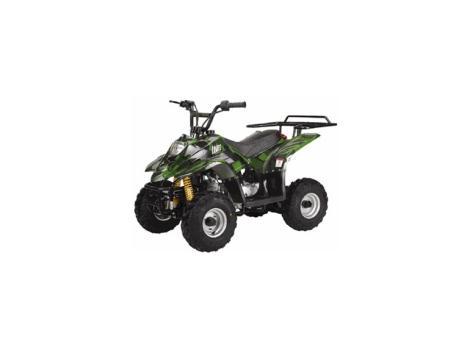 2013 Tao Tao 110cc ATV Type B3