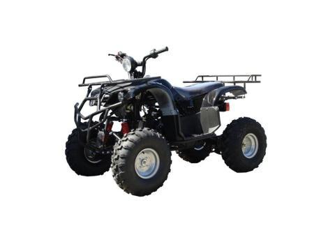 2013 Tao Tao 150cc ATV Type D