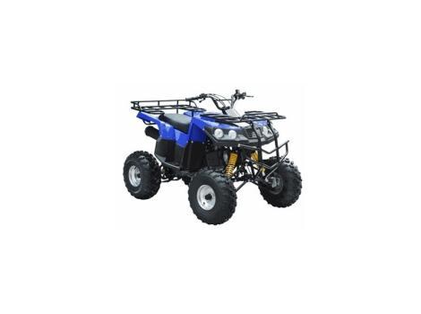 2014 Tao Tao 150cc ATV Type B