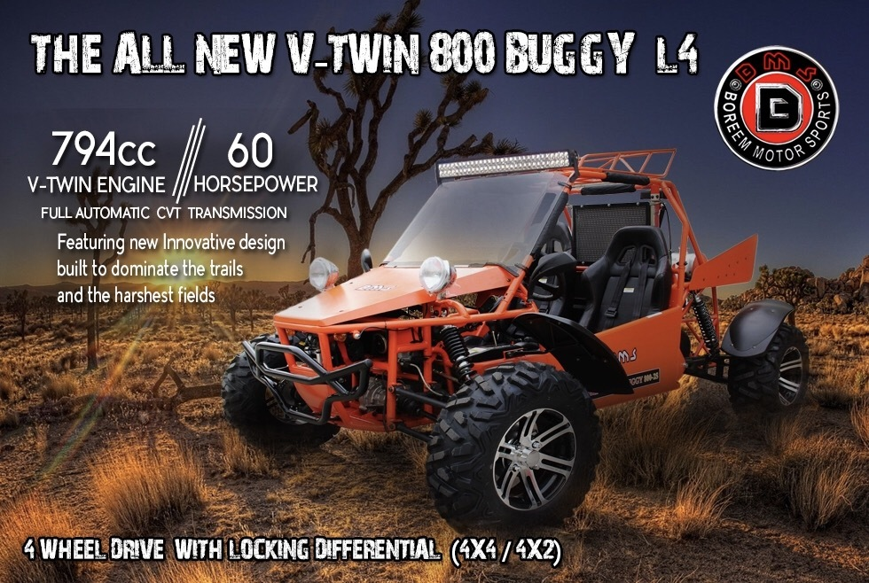 2016 BMS V-Twin 800 Buggy L4