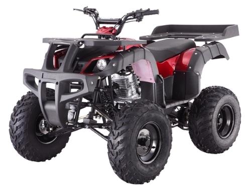 2016 Taotao 200cc Rhino 250 Size Atv Four Wheeler Quad Full Size Bi