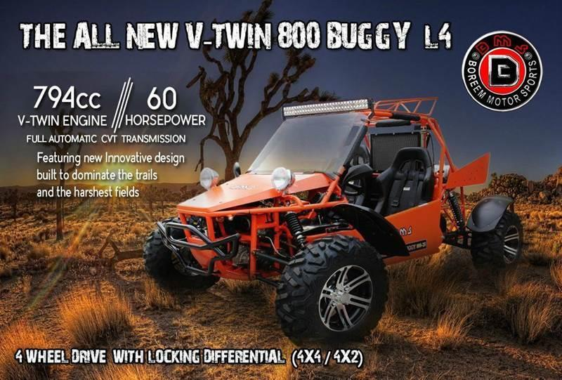2016 BMS V-Twin Buggy 800