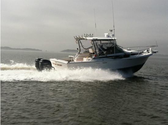 1995 Blackfin Blackfin 29-2 Combi