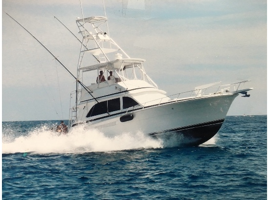 2002 Bertram Sport Fish