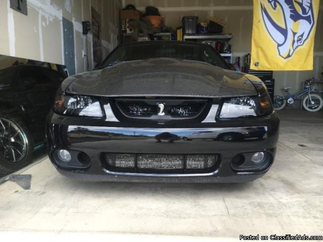 Ford: Mustang Cobra