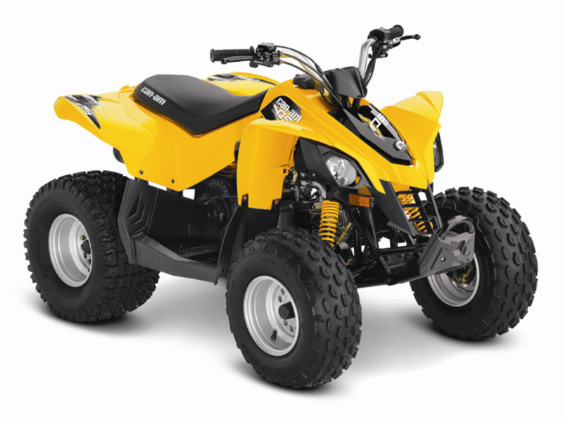 2014 Can-Am DS 90