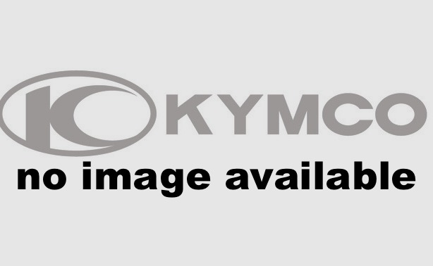 2016 Kymco Mongoose 90S