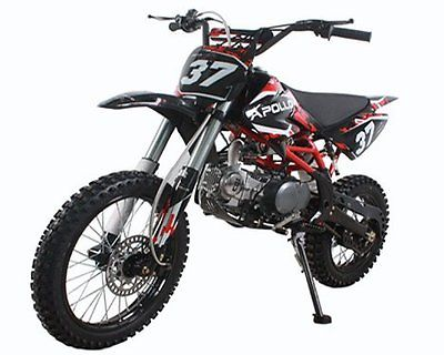 Other Makes New Apollo Dirt Bike 125cc Big Size with 17