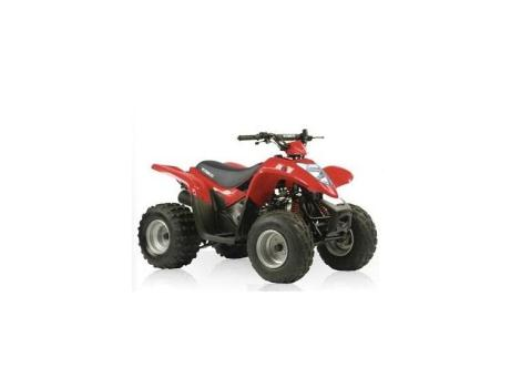 2014 Kymco Mongoose 90 R