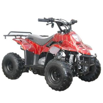 coolster atv motorcycles for sale