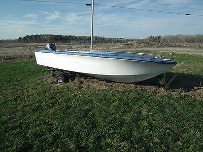 Sea Ray SRV 160 Motor boat with 50 HP Mercury
