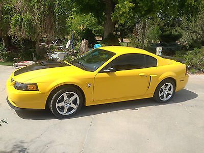Ford : Mustang Mach I Coupe 2-Door 2004 ford mach 1 low miles