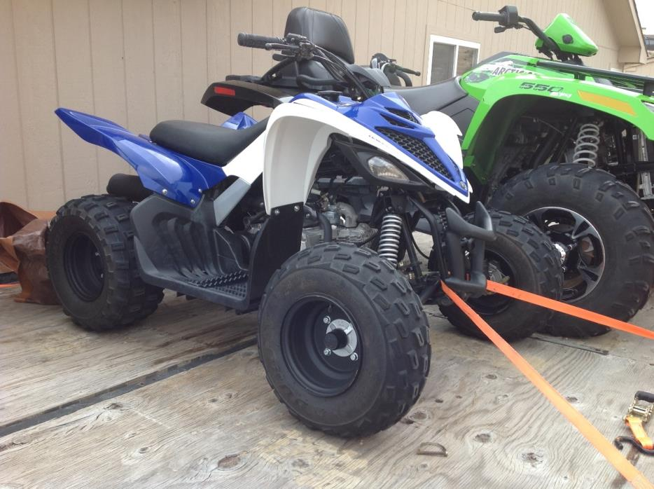 Yamaha raptor 250 vehicles for sale for 2011 yamaha raptor 90 for sale