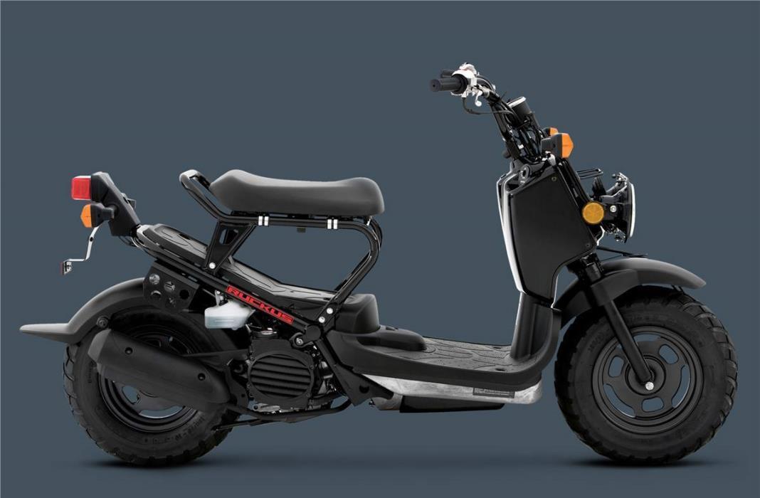 Honda Nps50 Vehicles For Sale