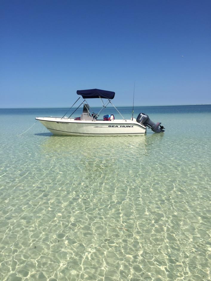 Sea Hunt Triton 186 Boats for sale