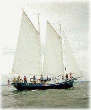 1985 COLVIN Custom
