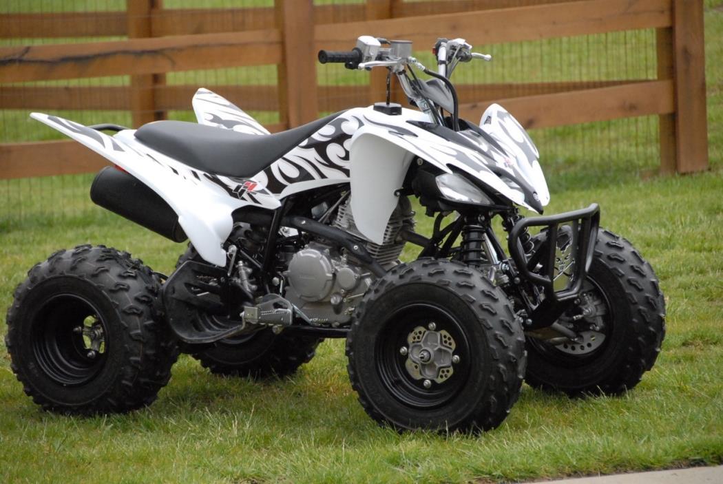 2010 Yamaha RAPTOR 250