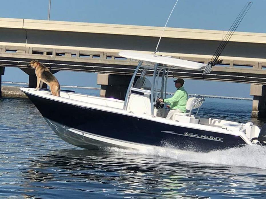 2013 Sea Hunt 225 Triton