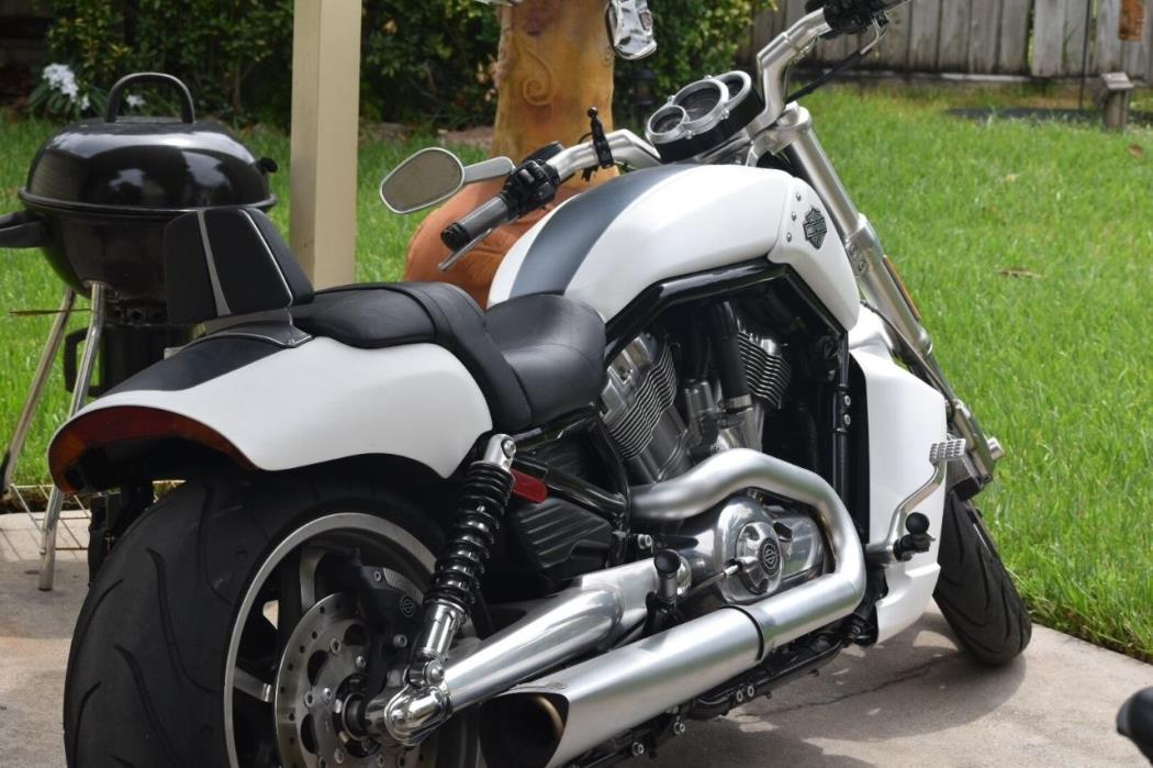 rod muscle harley davidson motorcycles houston texas