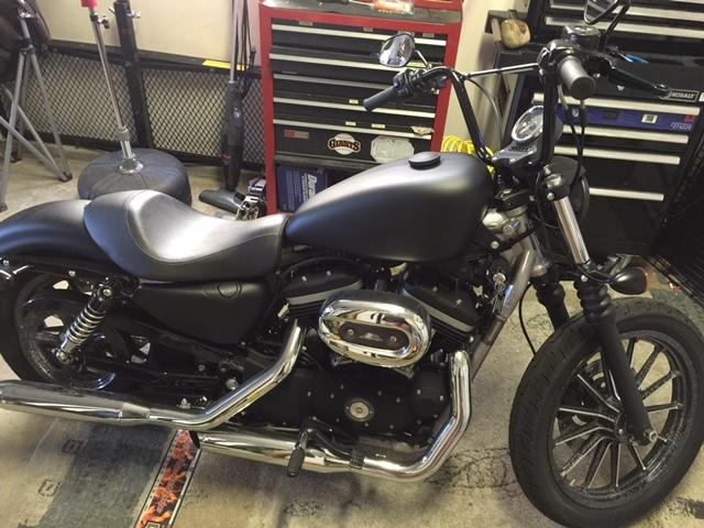2009 Harley-Davidson SPORTSTER 883 IRON