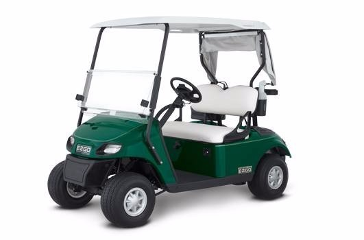 2017 Ezgo Freedom TXT - Electric