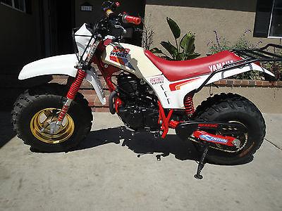 Intake Valve 1988 Yamaha BW200 Offroad Motorcycle