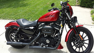 Harley-Davidson : Sportster 2012 harley davidson iron xl 883 n