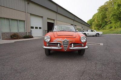 Alfa Romeo : Spider Veloce 1965 alfa romeo veloce spyder needs restoration complete quite original