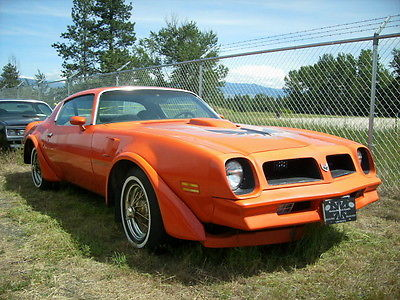 Pontiac : Trans Am Trans Am 76 pontiac firebird trans am 4 speed 400 manual muscle classic car 1976 t a