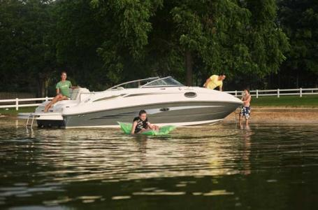 2010 Sea Ray 260 Sundeck Boat