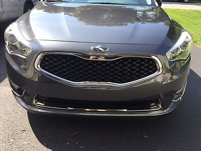 Kia : Cadenza Premium Sedan 4-Door 2014 kia cadenza premium sedan 4 door 3.3 l